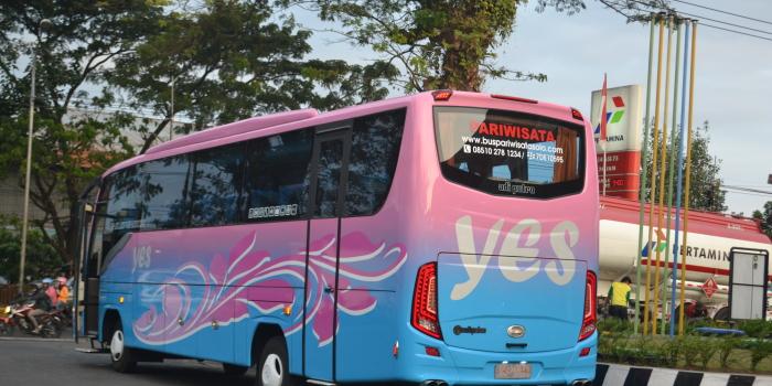 Jeb Bus 2